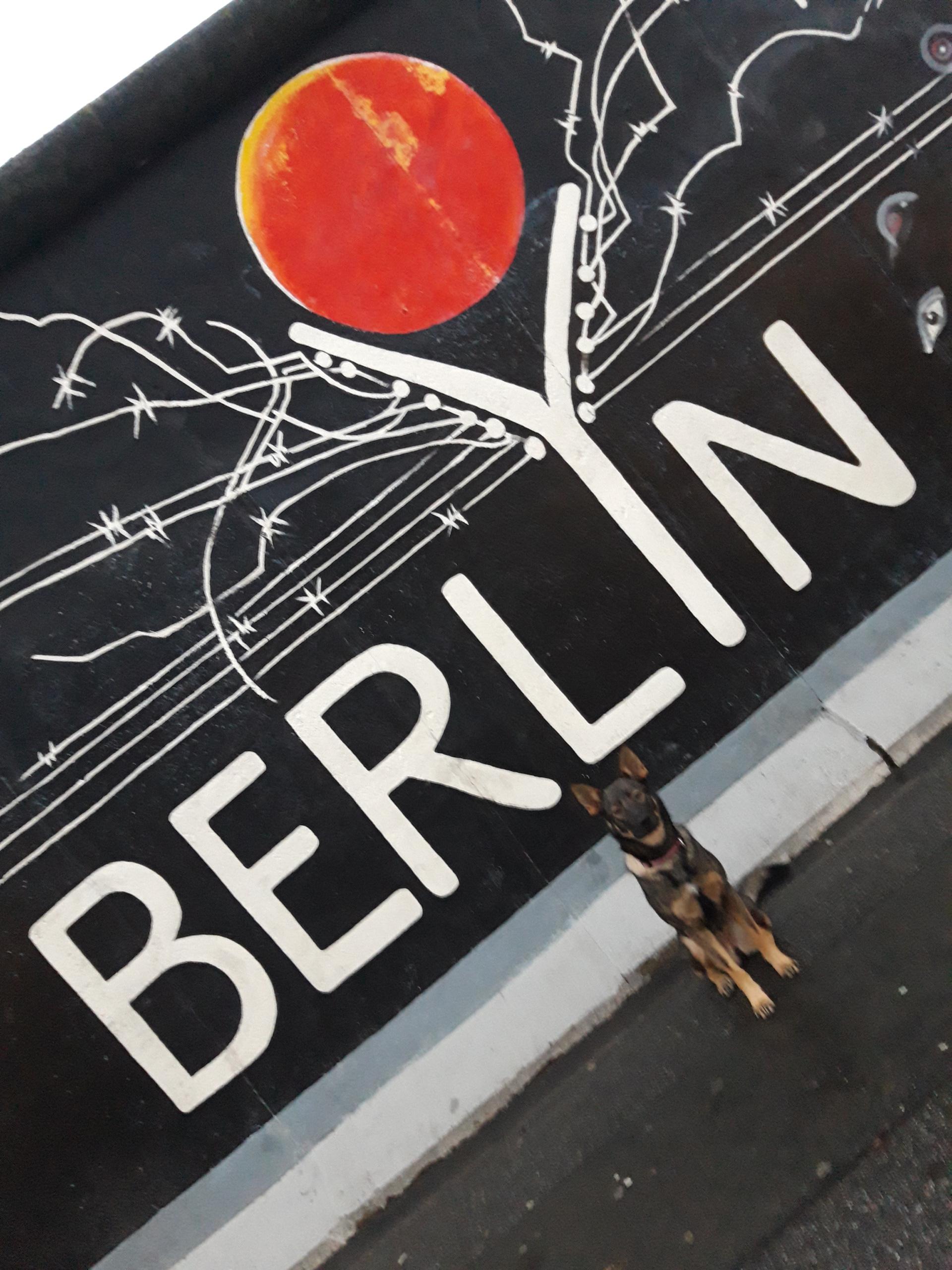 Berlin - Auch unser Firmenhund Aria ist mit in Berlin