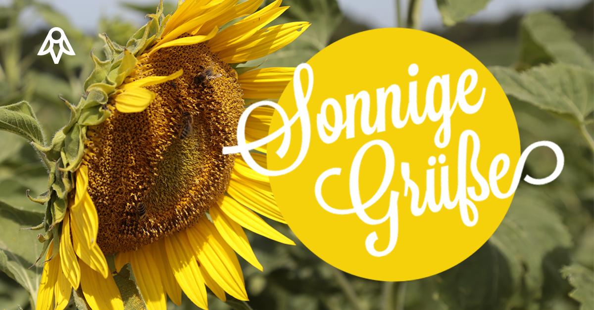 Summer-time! Sonnige Grüße
